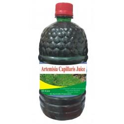 Hawaiian herbal artemisia capillaris juice