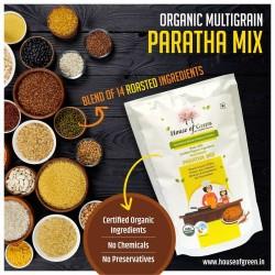Multigrain Paratha