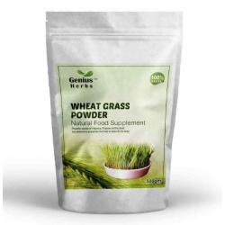 Wheat Grass Powder - 500 Gms -Health Supplement