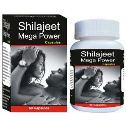 Shivalik Herbals - Shilajeet Mega Power
