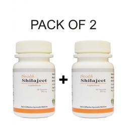 Shivalik Herbals - Shilajeet- Asphaltum