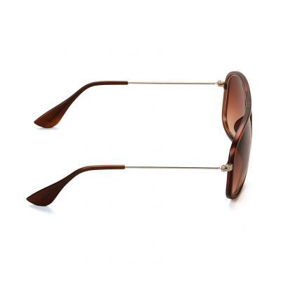 Classic Brown Sunglass 2