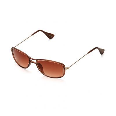 Vintage Brown Sunglass 1